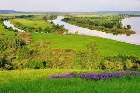 Государственная кадастровая оценка земель Московской области
