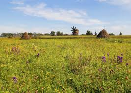 Агроэкологическая оценка земель