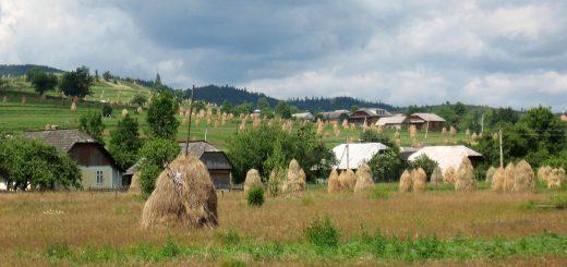 Кадастровая стоимость сельскохозяйственных земель