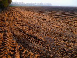 Оспаривание кадастровой стоимости земельного
