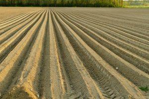 Кадастры и кадастровая оценка земель