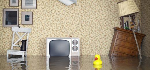Экспертиза квартиры при затоплении