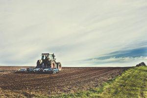 Оценка сх земель