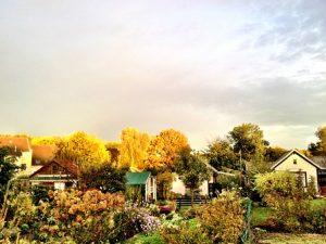Оценка садового участка