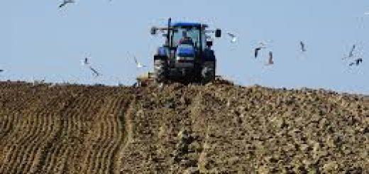 Оценка сельскохозяйственных земель