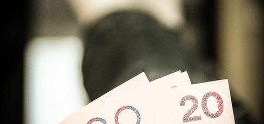 Оценка стоимости действующего предприятия