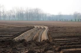 Качественная оценка земель