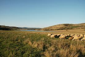 Оценка земель промышленности категории земли