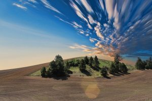 Назначение оценки земли